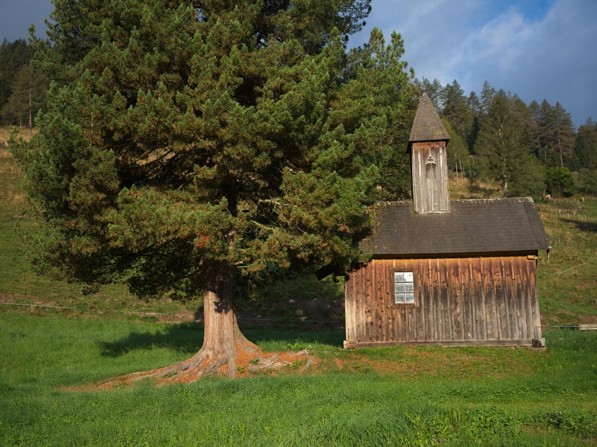 Allgau - small farmhouse chapel