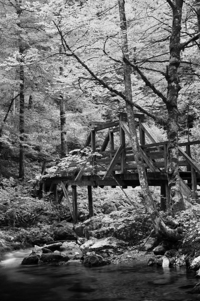 Holzbrücke #3