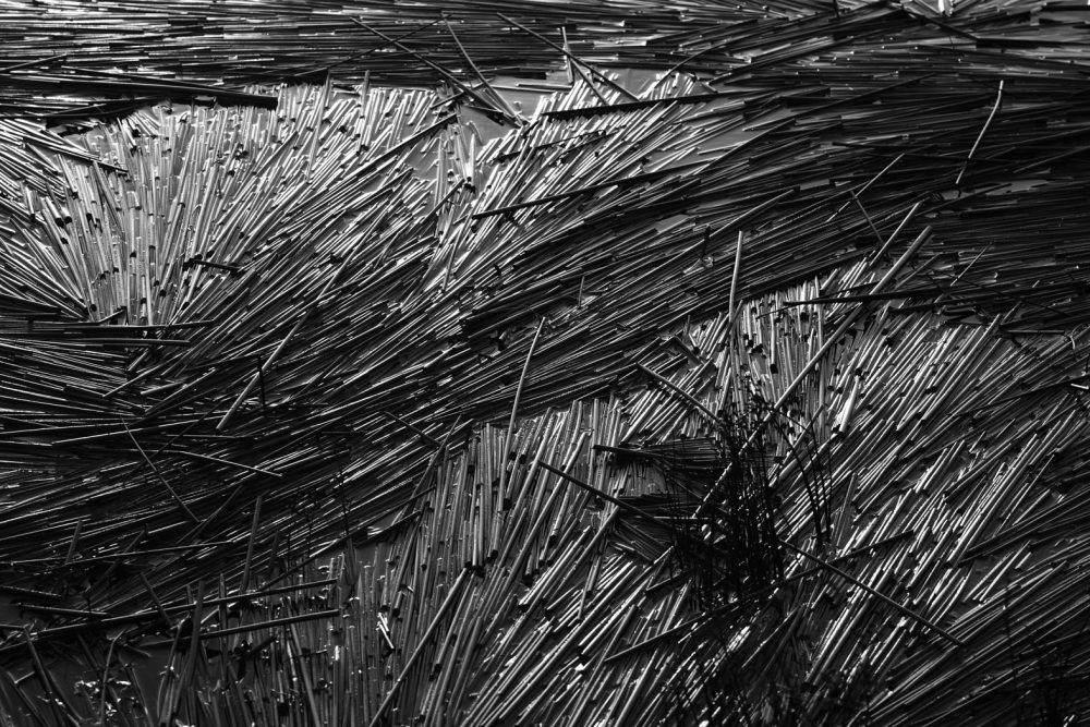 Reeds on Loch Poit